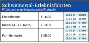 Reederei Warrings - Schweinswalfahrten